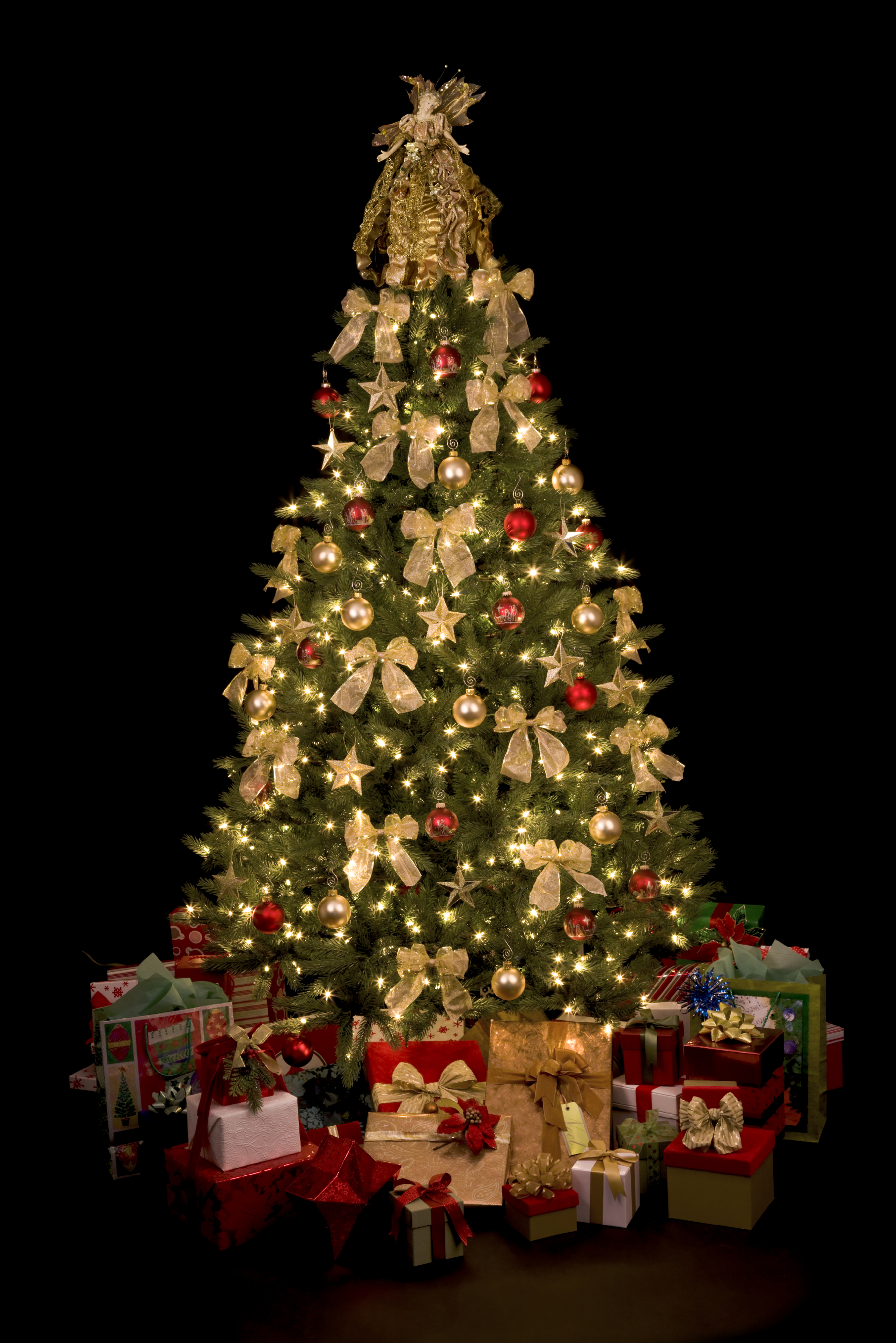 since - Large Christmas Tree